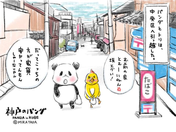 神戸のパンダ77話